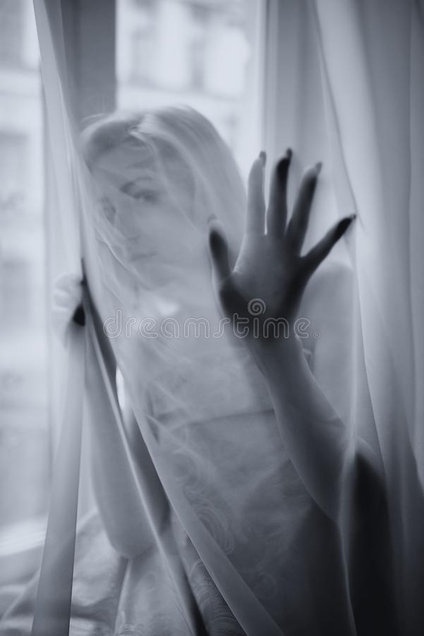 The young beautiful girl poses behind a curtain royalty free stock images