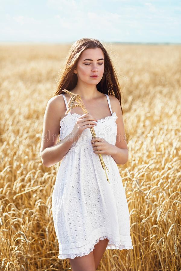 Young beautiful girl in the rays of the sun holds ripe spikelets of wheat in her hands royalty free stock photos