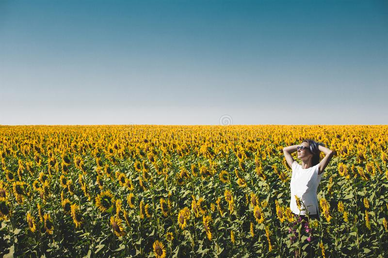 Young Beautiful Girl Standing In Sunflowers And Raising Hands Up. Freedom Lifestyle Journey Concept. Young beautiful girl in sunglasses stands in field with royalty free stock photo