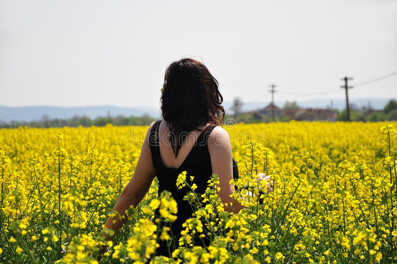Young beautiful girl on yellow flower field stock photography