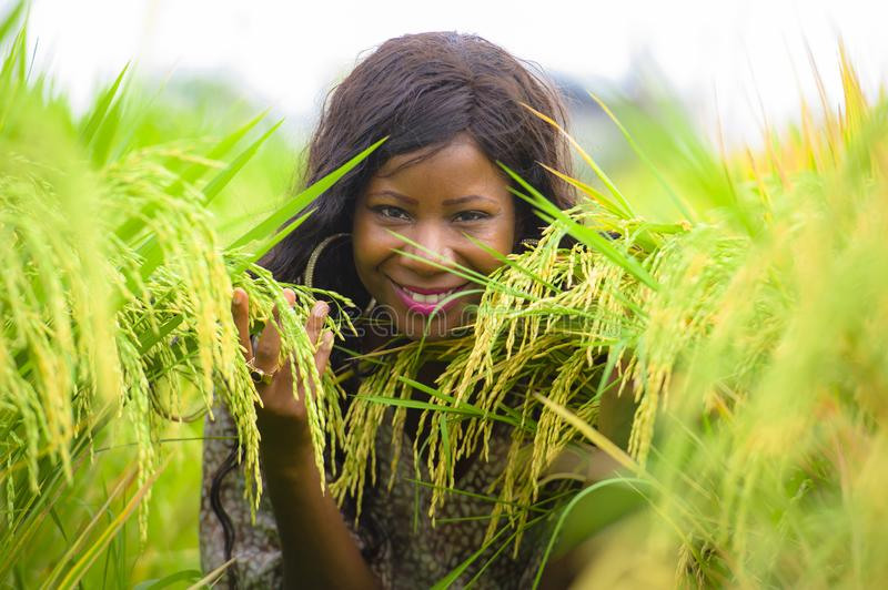 Outdoors fresh portrait of young beautiful and happy black afro American woman in cool dress having fun at tropical rice field stock photography