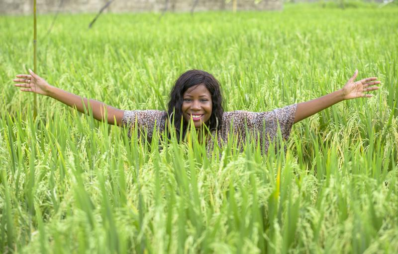 Young beautiful and happy black afro American woman in cool dress having fun at tropical rice field enjoying exotic holidays trip. Outdoors fresh portrait of royalty free stock image