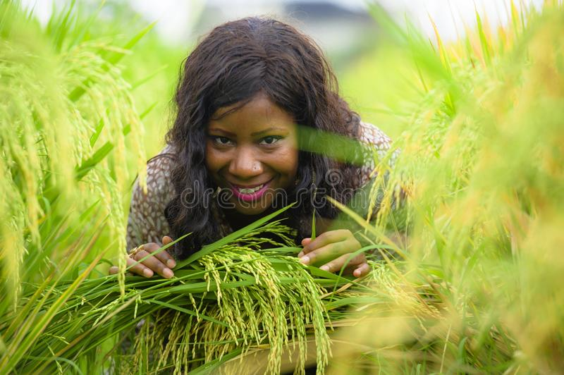 Outdoors fresh portrait of young beautiful and happy black afro American woman in cool dress having fun at tropical rice field royalty free stock photo