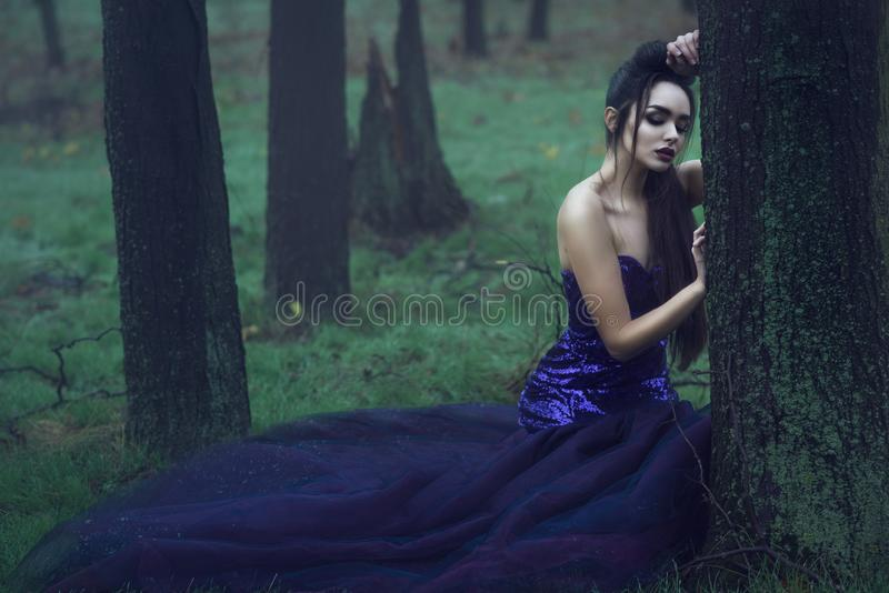 Young beautiful lady in luxurious sequin evening dress sitting in the mysterious misty woods leaning on the moss covered tree royalty free stock images