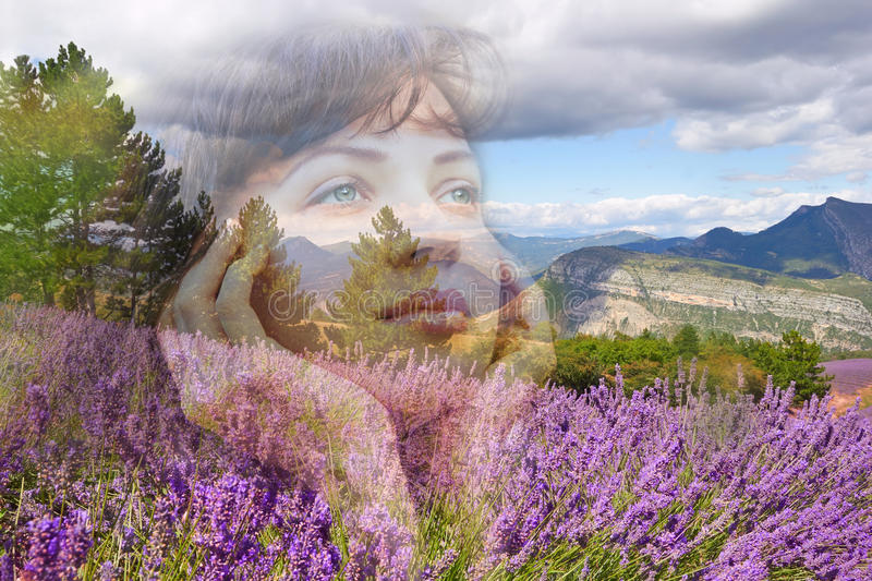 Young beautiful model in lavender field stock photos
