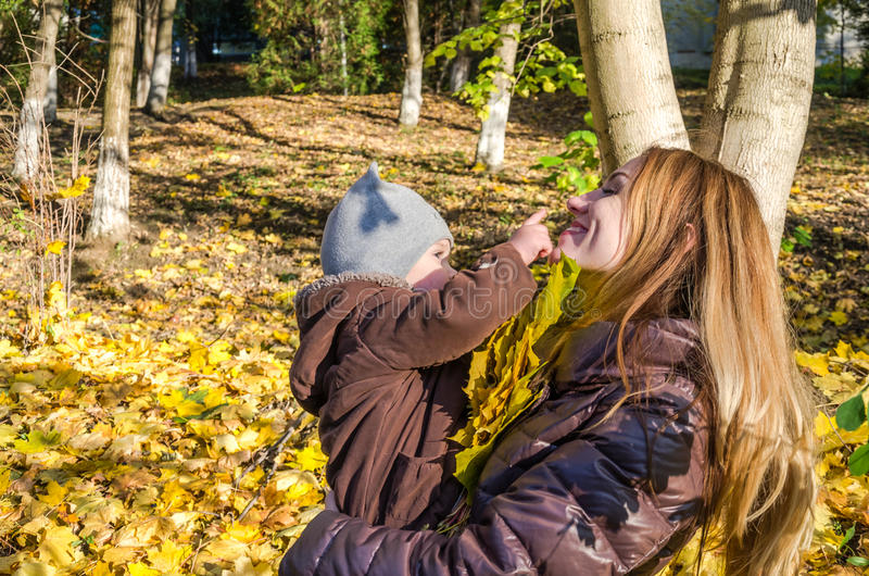 Young beautiful mother playing with her daughter, who is biting mother's nose, in the autumn park among the yellow fallen maple le. Aves royalty free stock photography