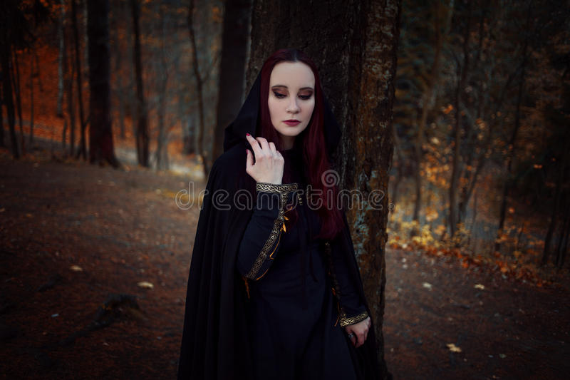 Young beautiful and mysterious woman in woods, in black cloak with hood, image of forest elf or witch stock images