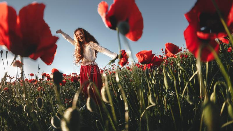 Young beautiful woman walking and dancing through a poppy field royalty free stock photo