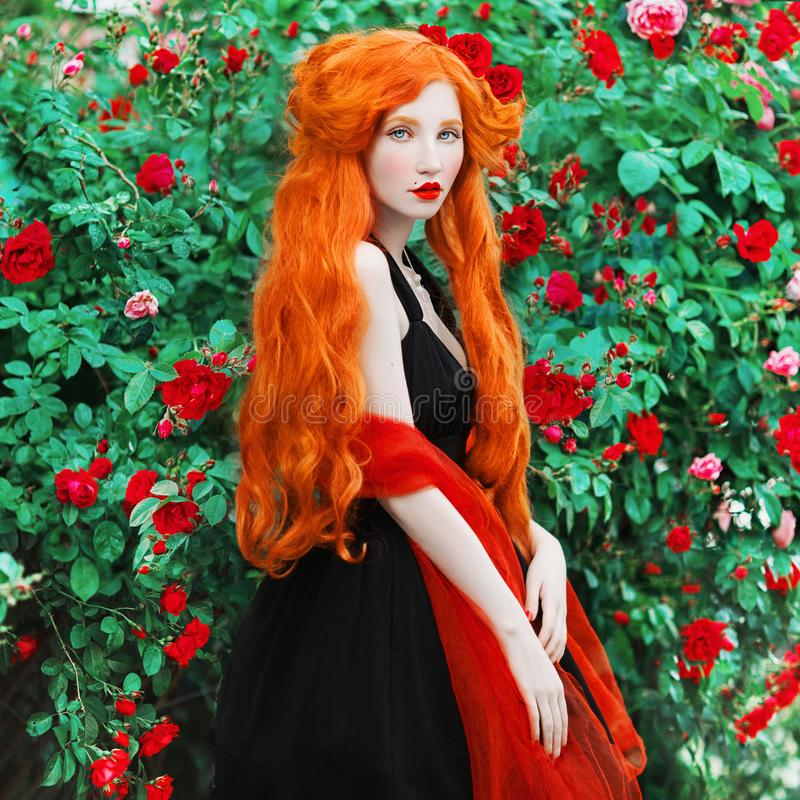 Young beautiful redhead queen with very long red hair. Fabulous renaissance woman in a black dress against the backdrop of beautif. Ul rose bush. Edwardian queen royalty free stock photo