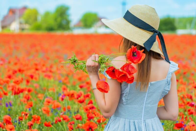Young beautiful redhead woman in a white shirt with a poppy wreath on her head standing backwards in a poppy field on stock photo
