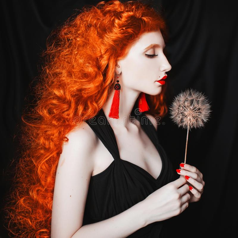 Young beautiful unusual redhead girl with curly hair on a black background. A woman with pale skin and very long red hair with a dandelion in her hands royalty free stock image
