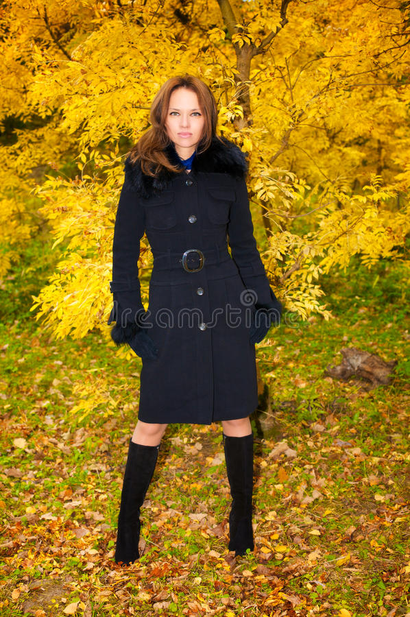 Young beautiful woman in the autumn forest royalty free stock photo