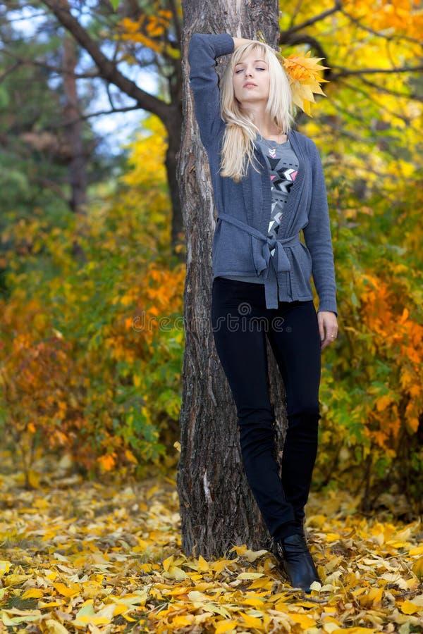 Young beautiful woman in autumn park stock photos