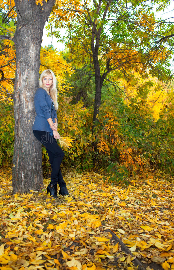 Young beautiful woman in autumn park stock images