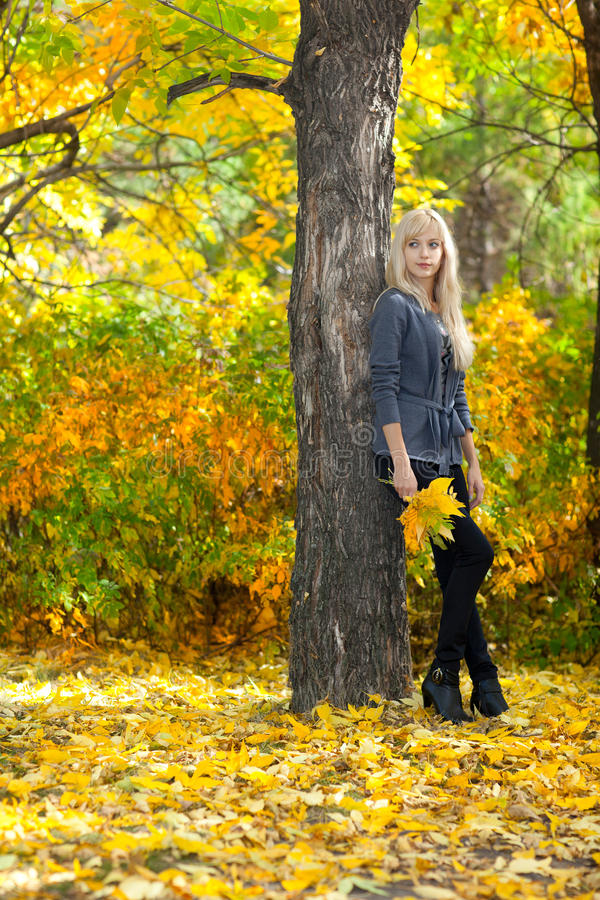 Young beautiful woman in autumn park royalty free stock photography