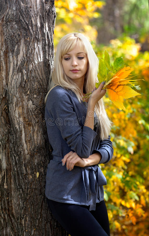 Young beautiful woman in autumn park stock image