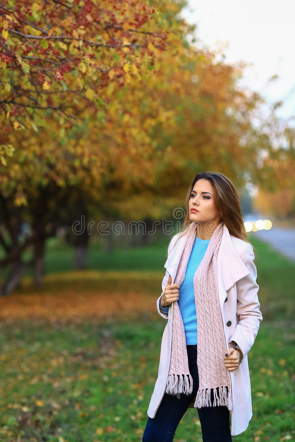 Young beautiful woman in autumn park posing. stock photography