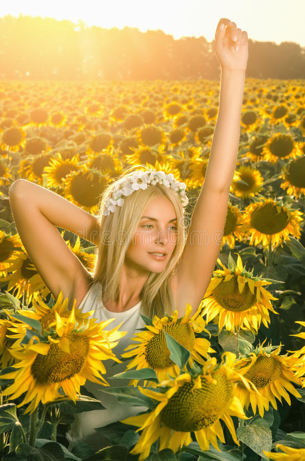Young beautiful woman on blooming sunflower field stock photo