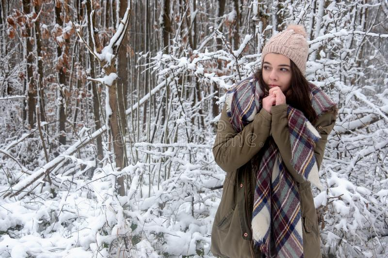 Young beautiful woman, girl portrait with shawl, hat.squeezes her hands from cold frost in winter forest stock images