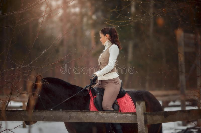 Young beautiful woman with horse outdoor portrait at spring day. Horseback style royalty free stock photo