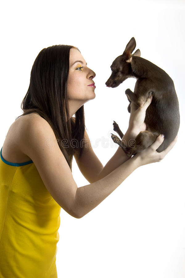 Young Beautiful Woman With Little Toy Terrier Dog Royalty Free Stock Photo