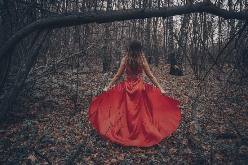 Young beautiful woman in the long red dress is walking along foggy mysterious forest stock image