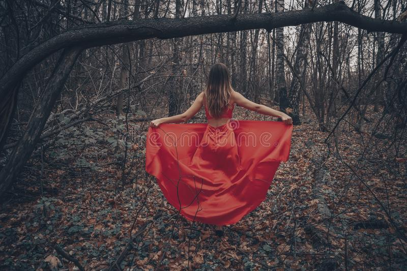 Young beautiful woman in the long red dress is walking along foggy mysterious forest royalty free stock photos