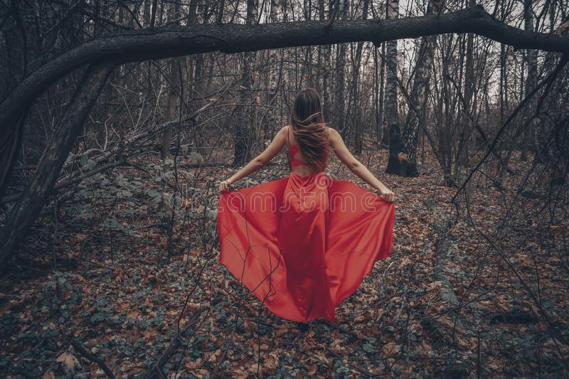 Young beautiful woman in the long red dress is walking along foggy mysterious forest stock images