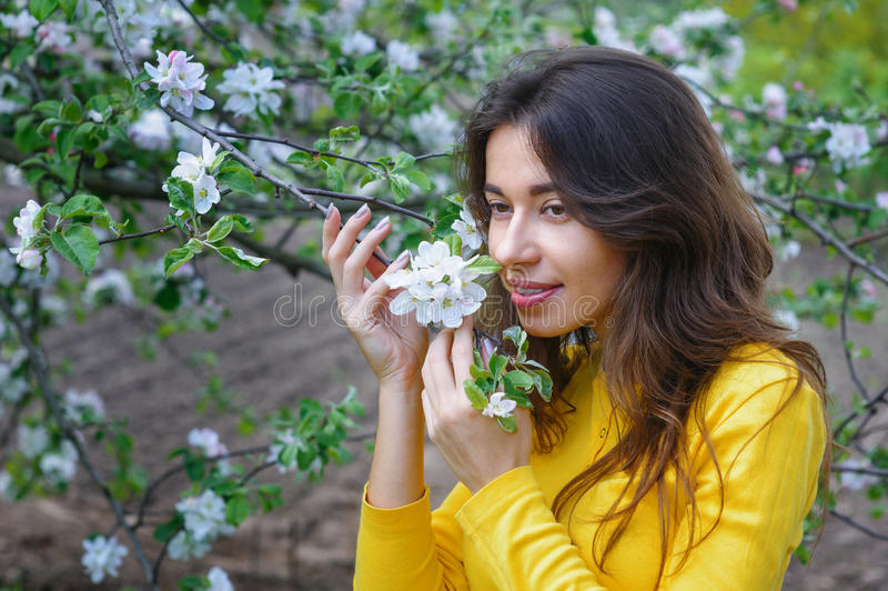 Young beautiful woman near the blossoming Spring Garden tree.  stock images