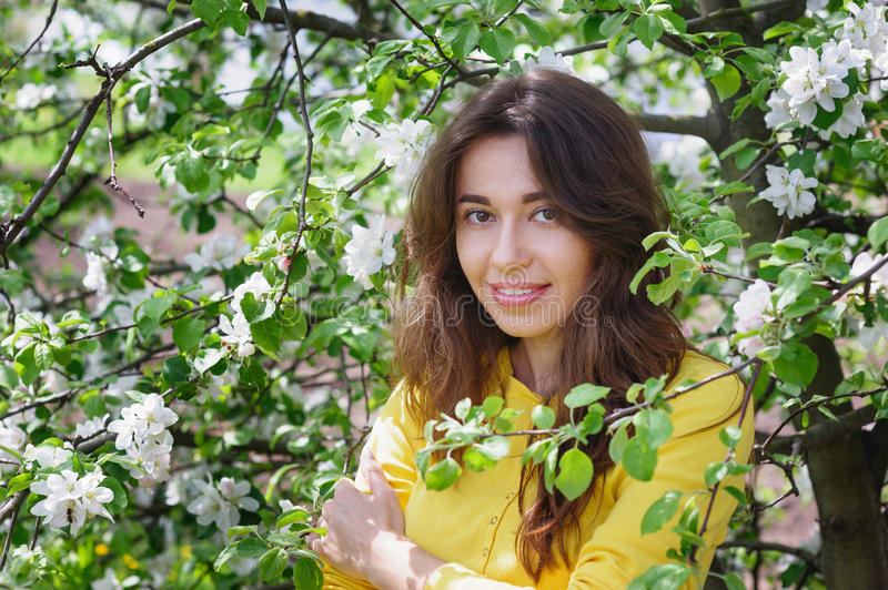 Young beautiful woman near the blossoming Spring Garden tree.  stock photography