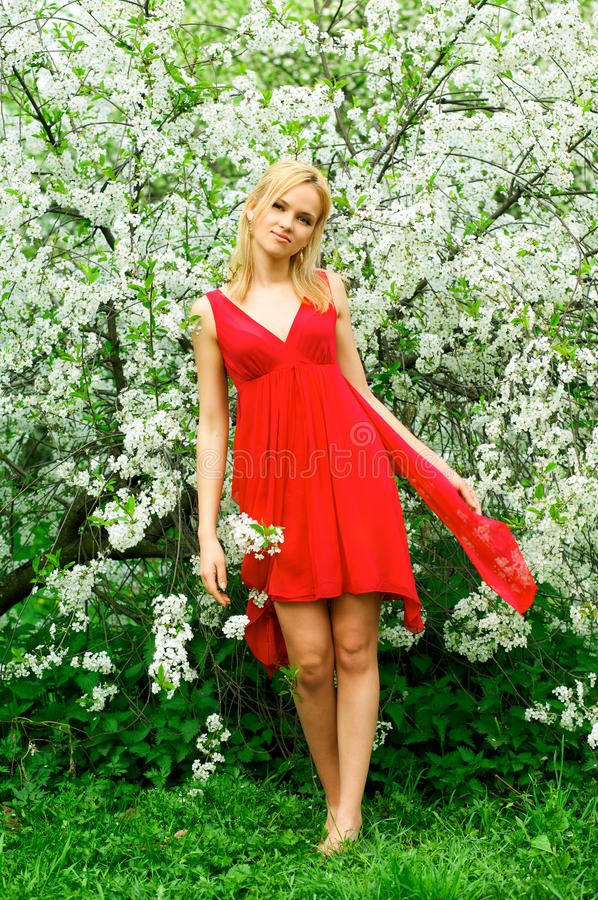 Young beautiful woman in a red dress royalty free stock photos