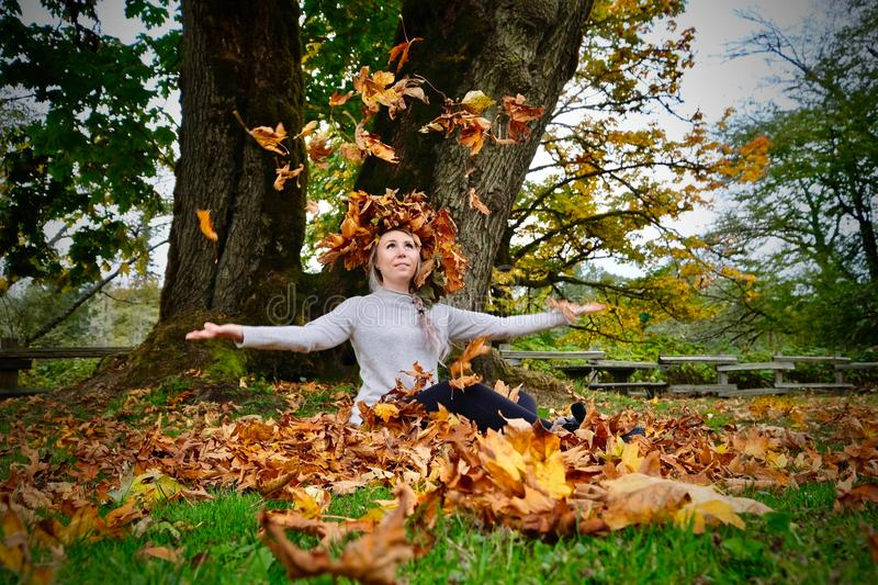 Young beautiful woman sitting by maple tree with yellow leaves in fall. royalty free stock photo