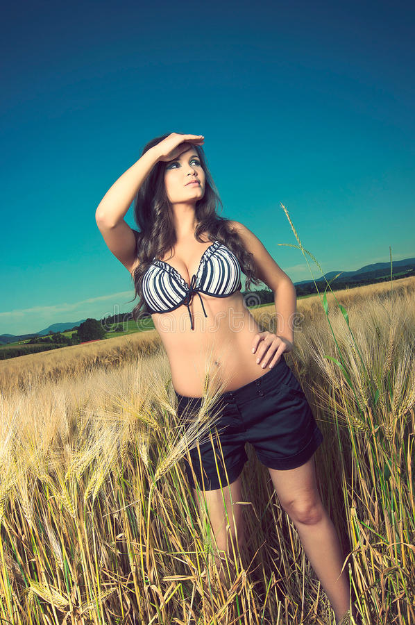 Young beautiful woman in underwear in wheat field royalty free stock photos