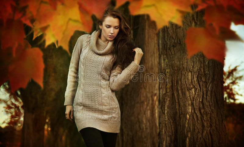 Young beauty royalty free stock photos