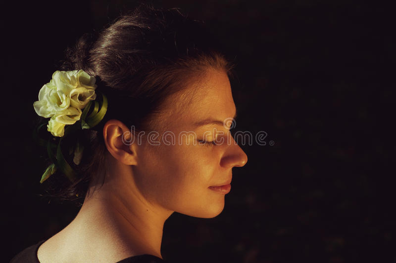 Download Young Beauty stock image. Image of female, hairstyle - 27411363