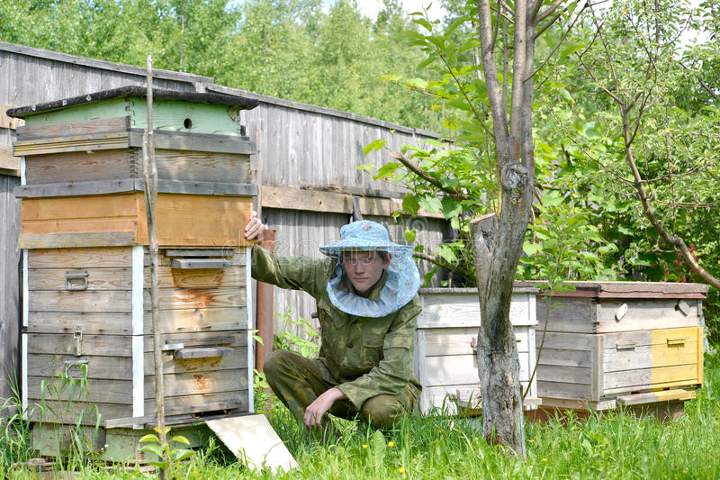 The young beekeeper sits about a beehive stock images