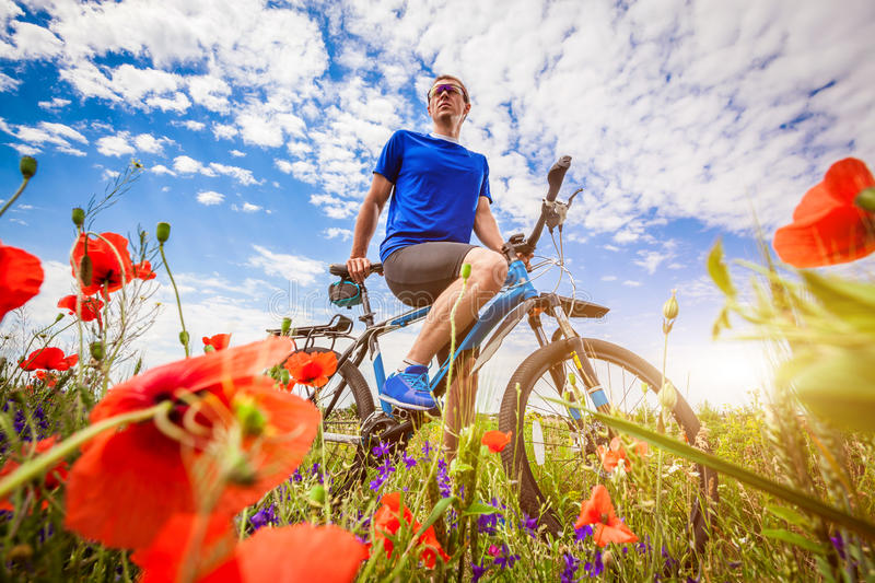 Young bicyclist rides on poppy field royalty free stock photo