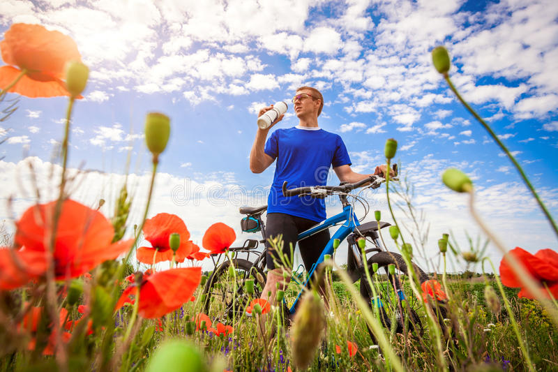 Young bicyclist rides on poppy field royalty free stock image