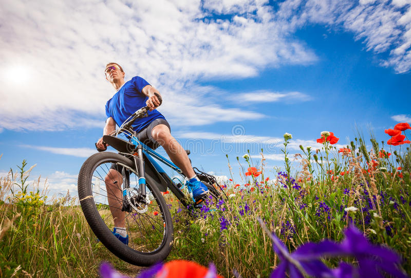 Young bicyclist rides on poppy field stock photos