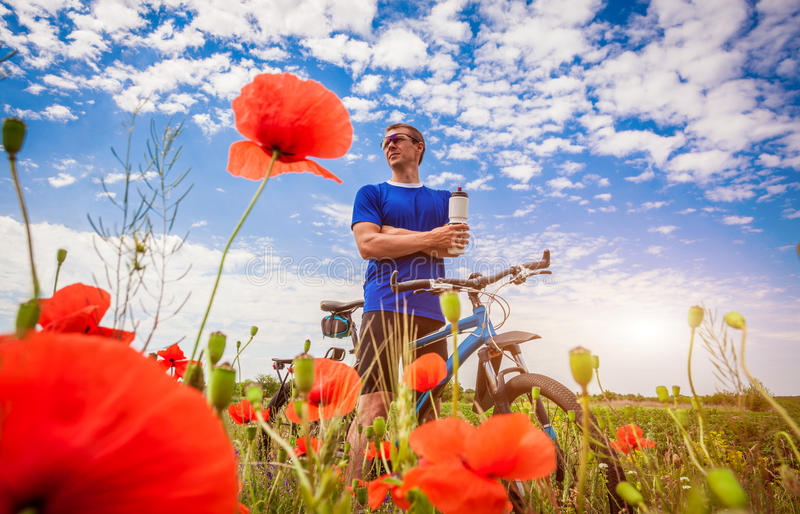Young bicyclist rides on poppy field royalty free stock images