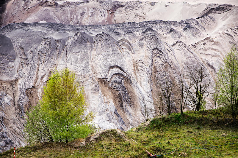 young birch trees on the edge of the pit from lignite (brown coal) opencast mining with destroyed layer of soil and landslides stock photos