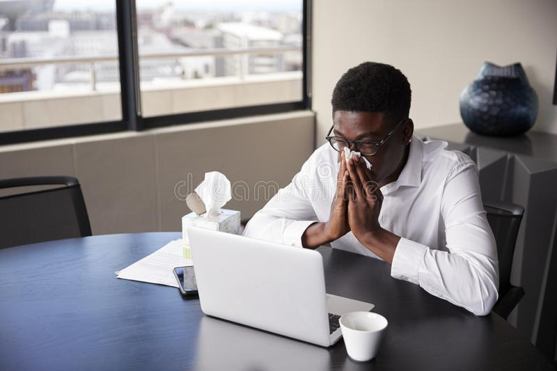 Young black businessman sitting at an office desk blowing his nose into a tissue, elevated view royalty free stock photography