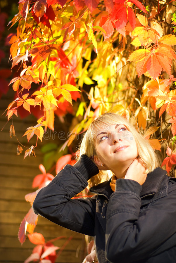 Download Young Blond Girl Royalty Free Stock Images - Image: 3249409