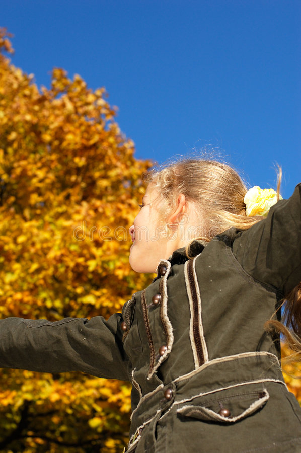 Young blond girl in an autumn stock images