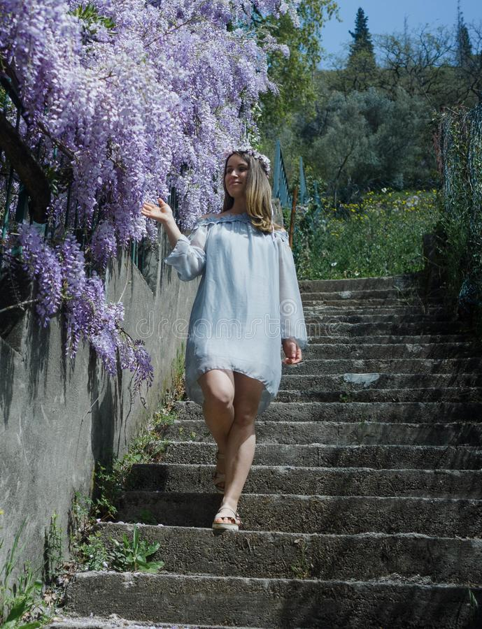 Young blonde curly hair woman in blooming wisteria garden in spring. Woman wearing in lilac dress walking royalty free stock photos