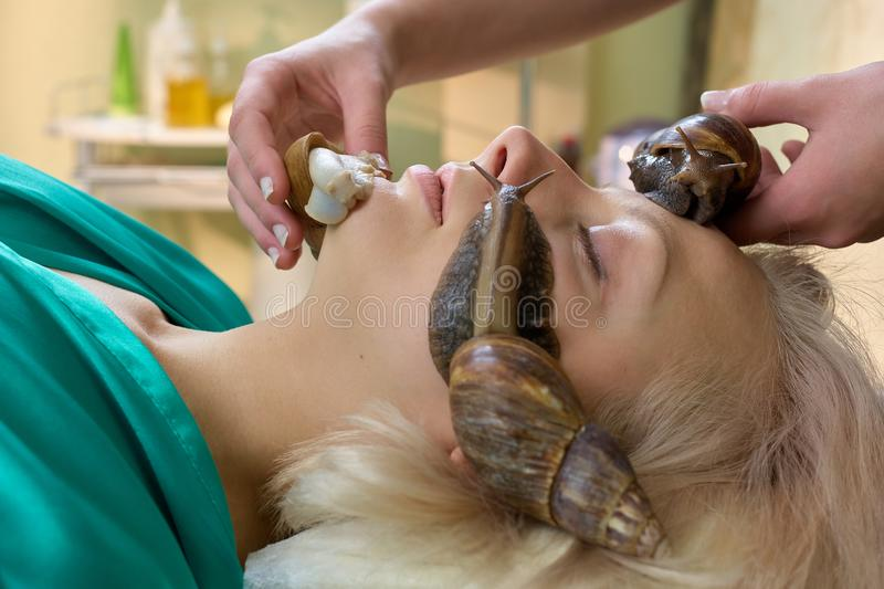 Young blonde receiving facial snails massage. royalty free stock photography