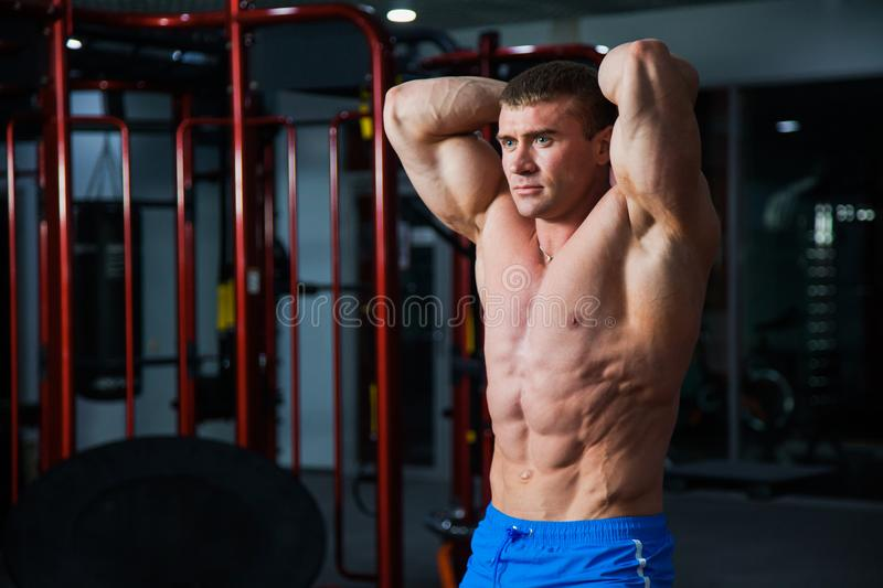 Young bodybuilder demonstrating strong muscular body at gym stock photos