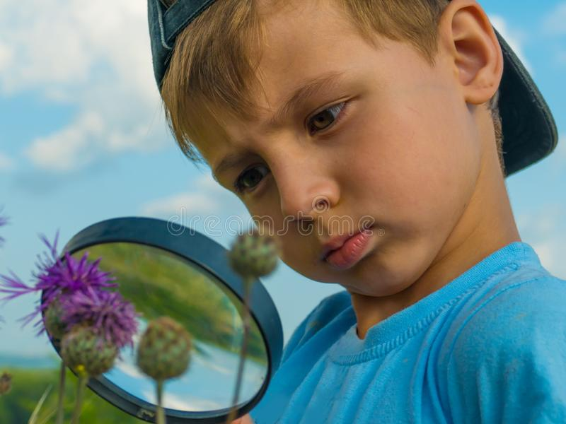 Young botanist with a magnifier royalty free stock image
