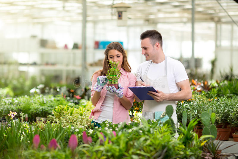 Young botanists in greenhouse royalty free stock image