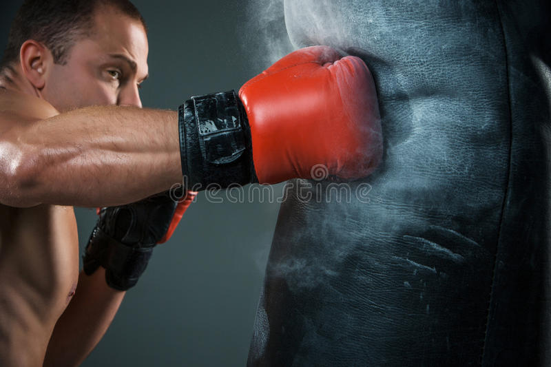 Young Boxer boxing royalty free stock images